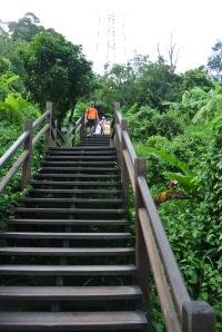 Stairs...yuck