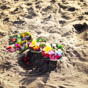 A morning offering on the beach.