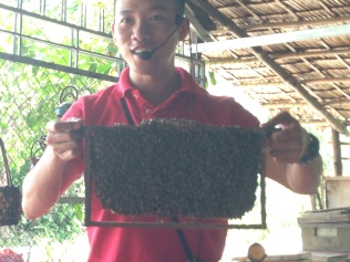 Frank holding a screen of the honey bees.